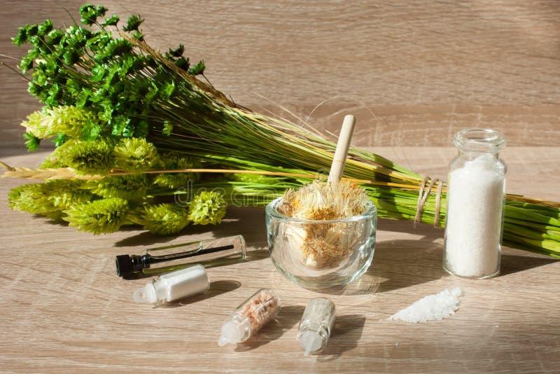 ZIELONYCH rośliien ISTOTNY olej składniki DLA pętaczki, morze sól POJĘCIE natura kosmetyki obrazy royalty free