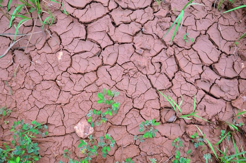 Ziemi Suchy tło obrazy stock