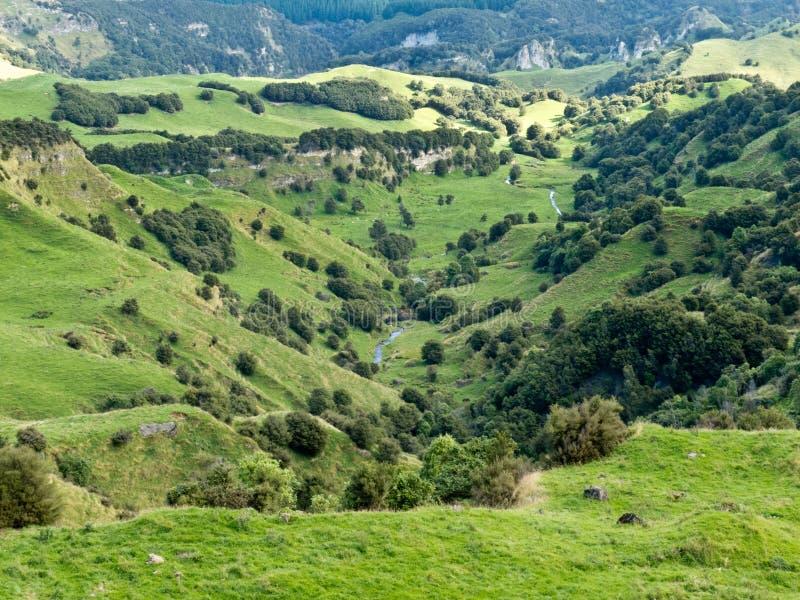 Ziemi uprawnej krajobrazowej sceny Hawke Podpalany Nowa Zelandia zdjęcia stock