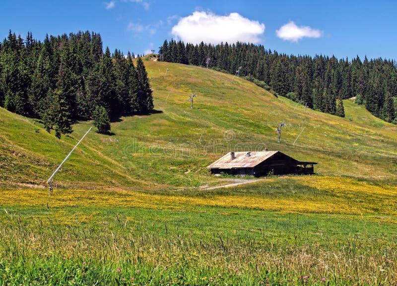Ziemia Mont Blanc, Francuscy Alps fotografia stock