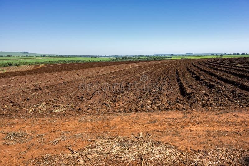 Ziemia wkrótce po arachidowego żniwa na słonecznym dniu w Sao Paulo, Brazylia zdjęcie royalty free