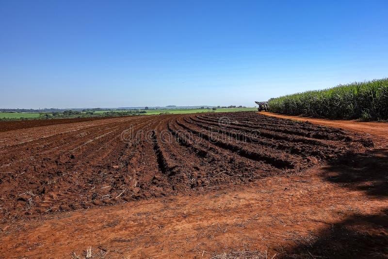 Ziemia wkrótce po arachidowego żniwa na słonecznym dniu w Sao Paulo, Brazylia fotografia stock