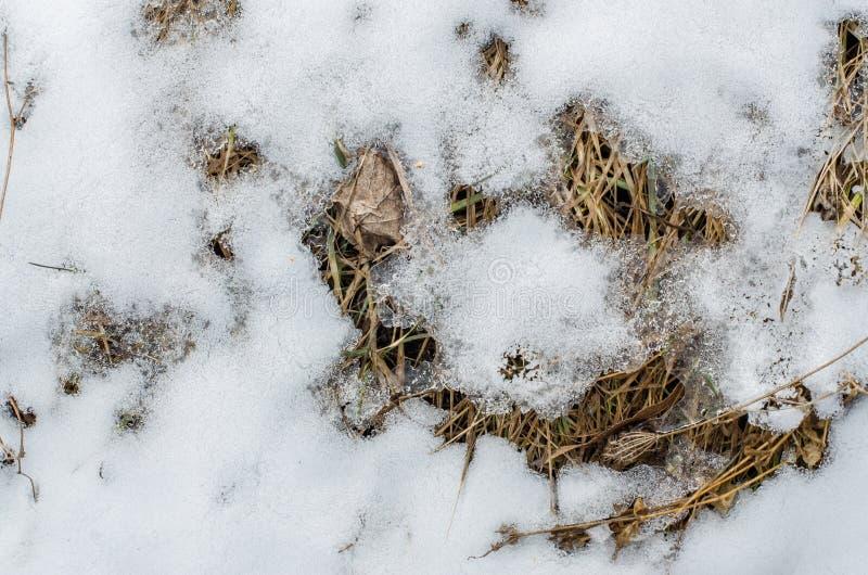 Ziemia zakrywająca z śniegiem zdjęcia stock