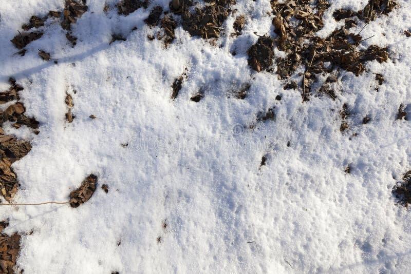 ziemia zakrywająca z śniegu zakończeniem up zdjęcie stock