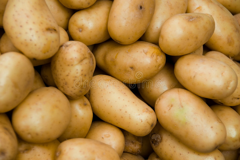 ziemniaki obraz stock