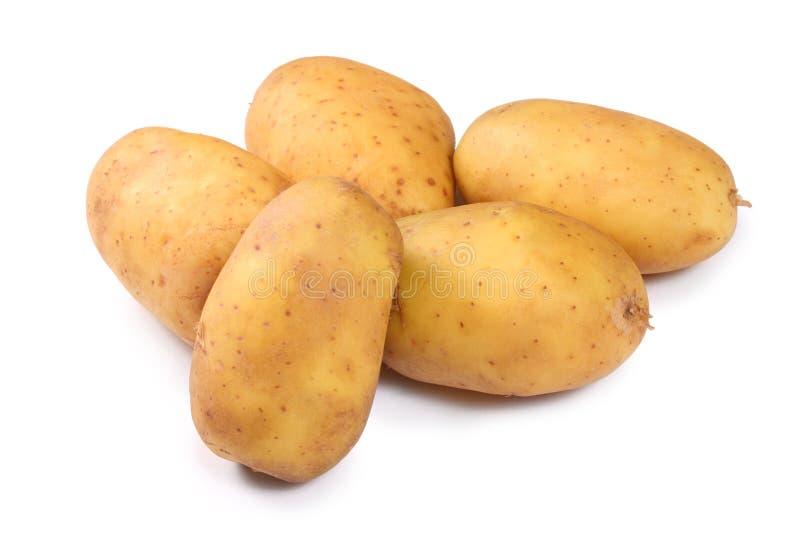 ziemniaki białe obrazy stock