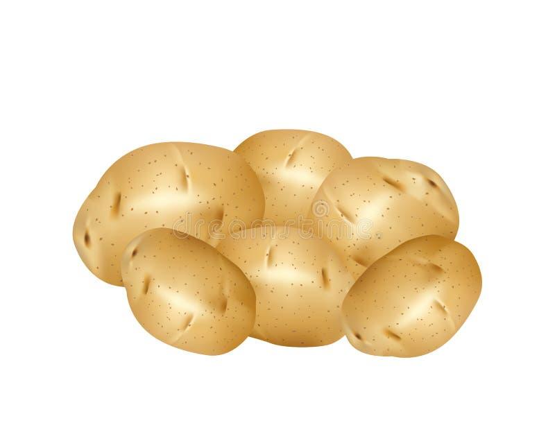 ziemniaki białe royalty ilustracja