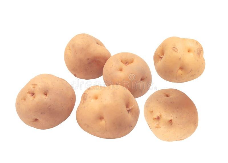 ziemniaki odosobnione białe obraz stock