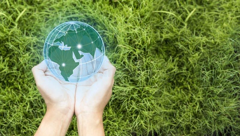 Ziemski dzie? W r?kach drzewa r rozsady Oprócz światu i innowacji pojęcia, dziewczyna trzyma małego rośliny lub drzewa sapling je zdjęcia stock