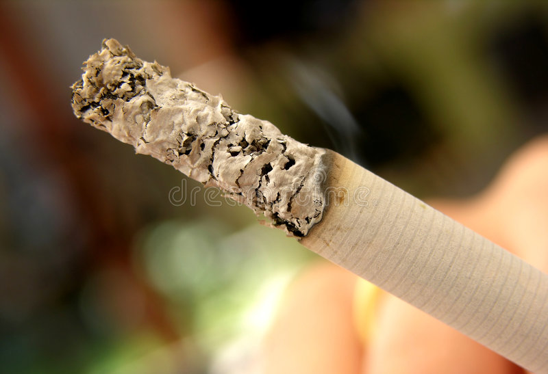 Zigarettenasche Stockbild