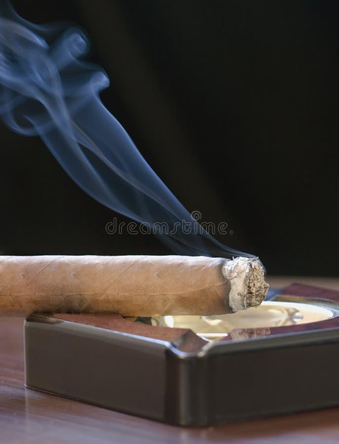 Zigarre und kräuselnrauch lizenzfreie stockfotografie