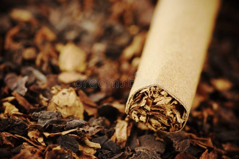 Zigarre und Tabak lizenzfreie stockfotos