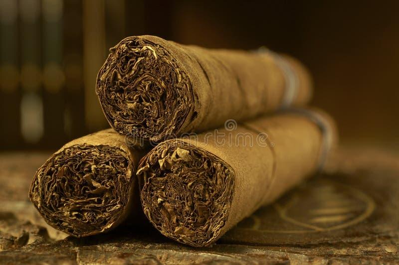 Zigarren stockbilder