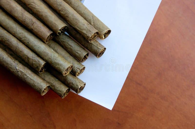 Zigarren in einem Kasten stockfoto