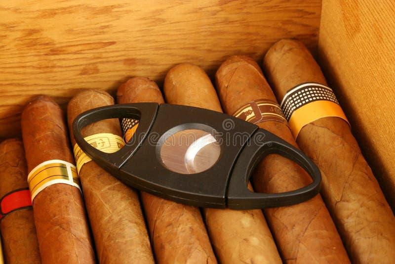 Zigarren mit Scherblock lizenzfreies stockfoto