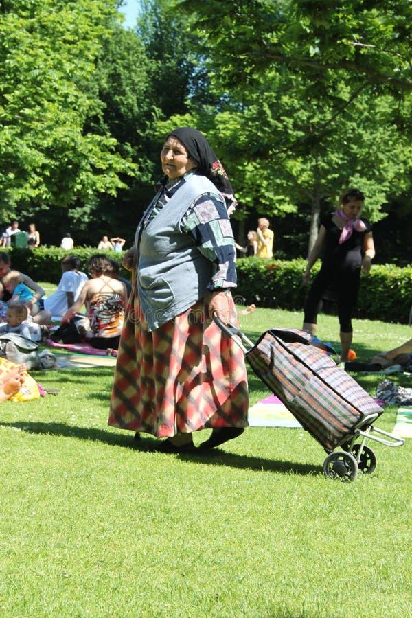 Zigeunervrouw met kar royalty-vrije stock afbeelding