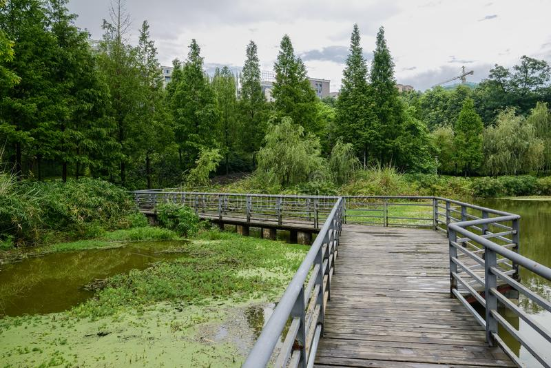 Zigzag planked footbridge over lake with verdant city in background on cloudy summer day. Zigzag planked footbridge over the lake with verdant city in the stock image