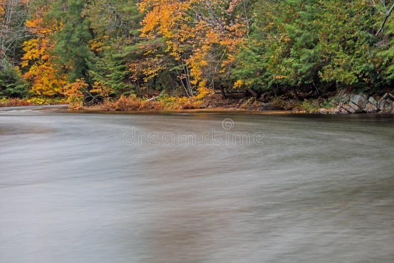 Zigzags de rivière d'Oxtongue par le feuillage d'automne image stock