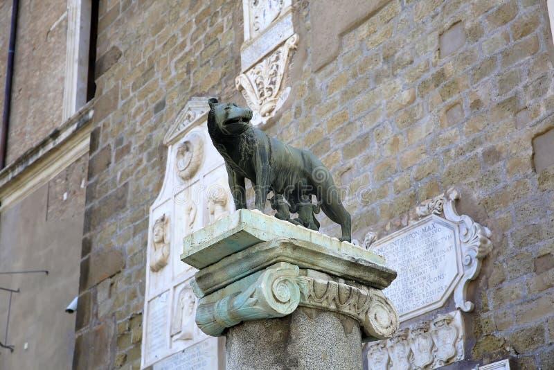 Zij-wolf die de tweelingen zogen een symbool van Rome - brons beeldhouwwerk, Capitoline-Heuvel, Rome, Italië stock afbeeldingen