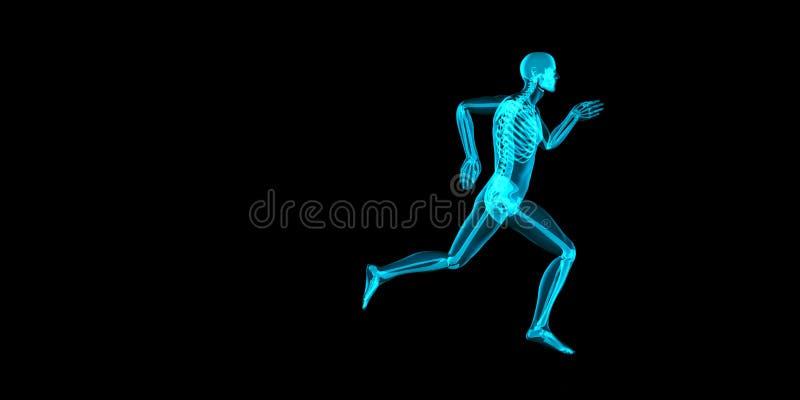 Zijaanzicht 3D illustratie van een jogger met zichtbaar skelet vector illustratie