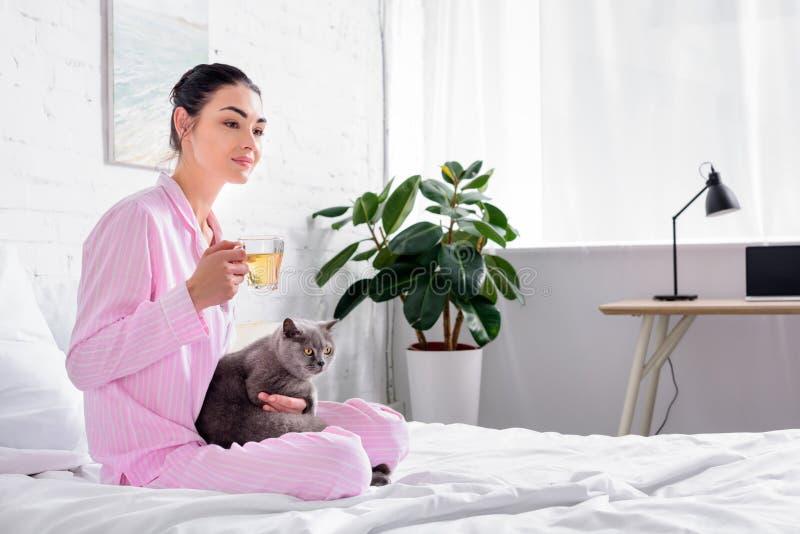 zijaanzicht die van vrouw met kop thee en de kat van Groot-Brittannië shorthair op bed rusten royalty-vrije stock afbeelding