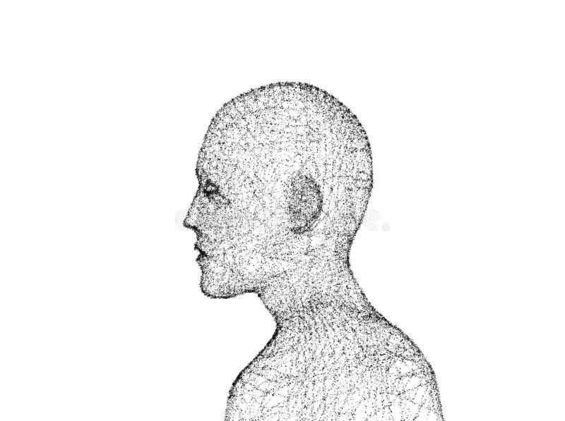 Zijaanzicht van menselijk lichaam Model op witte achtergrond, art. wordt geïsoleerd dat stock illustratie
