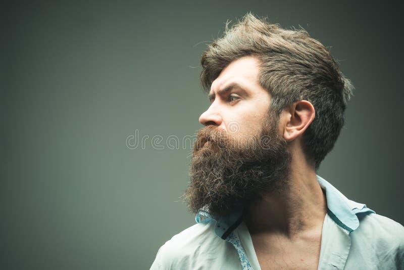 Zijaanzicht van mensen het brutale gebaarde hipster, exemplaarruimte Hoe grote baard kweek De manieren optimaliseren gezichtshaar stock afbeelding