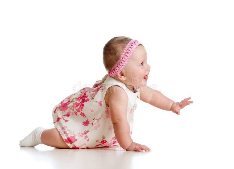 Zijaanzicht van mooi kruipend babymeisje royalty-vrije stock afbeeldingen