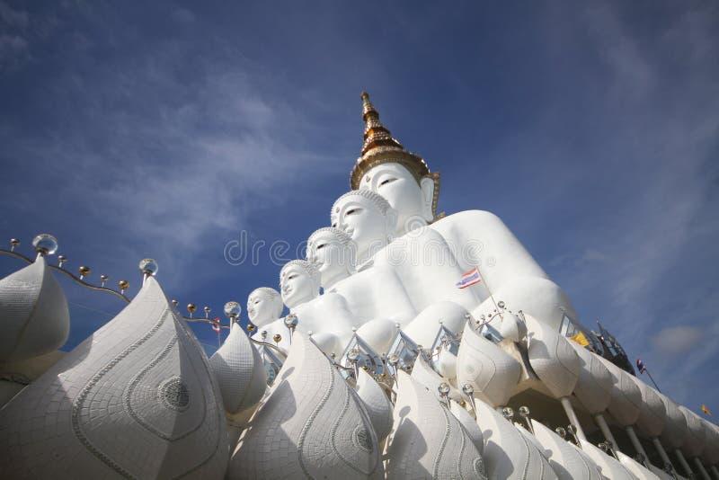 Zijaanzicht van Vijf witte standbeelden die van Boedha goed groepering voor blauwe hemel zitten royalty-vrije stock fotografie