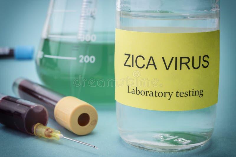 Zika病毒研究的测试  免版税库存照片