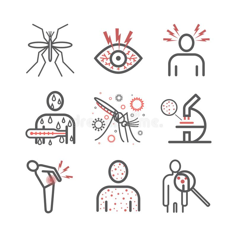 Zika Virus line icon Infographics. Symptoms, Vector signs for web graphics. Zika Virus line icon Infographics, Vector signs for web graphics stock illustration