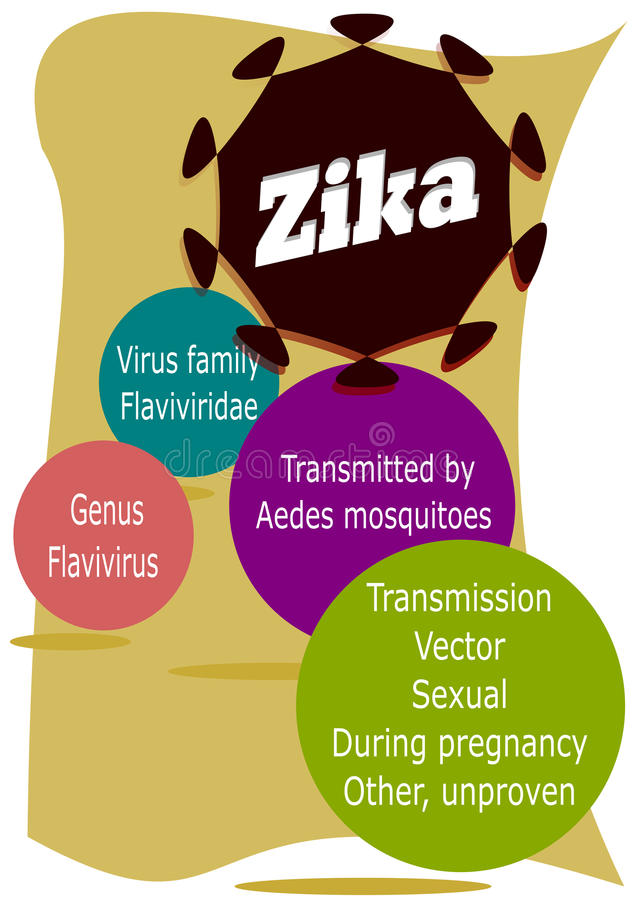 Zika virus. Main features of zika, such as viruses, family, transmitters agents and possible modes of transmission virus vector illustration