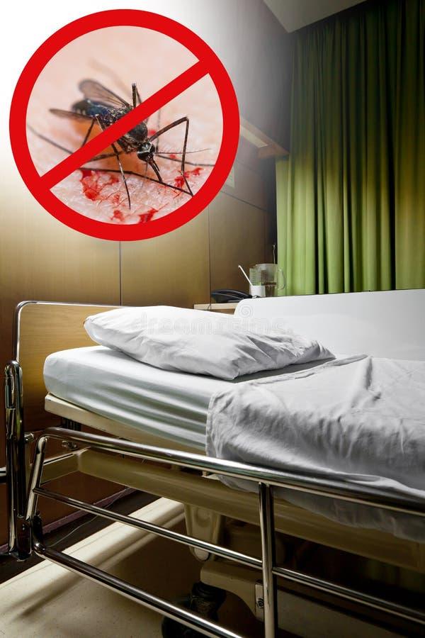 Zika virus Ren tom sjuksäng i en sjukhussal med stoppmos royaltyfria foton