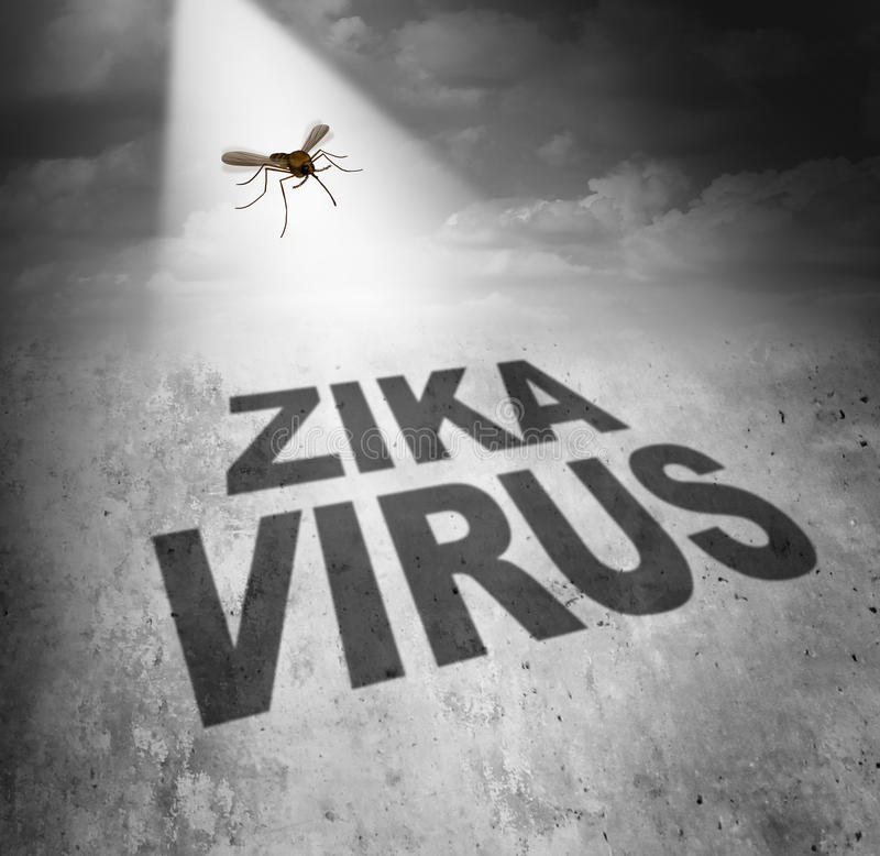 Zika Virus Risk. Symbol as the shadow of a disease carrying mosquito forming text that represents the danger of transmitting infection through bug bites stock illustration