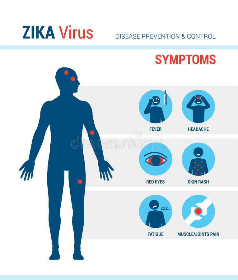 Zika virus symptoms. Infographics with stick figures and text vector illustration