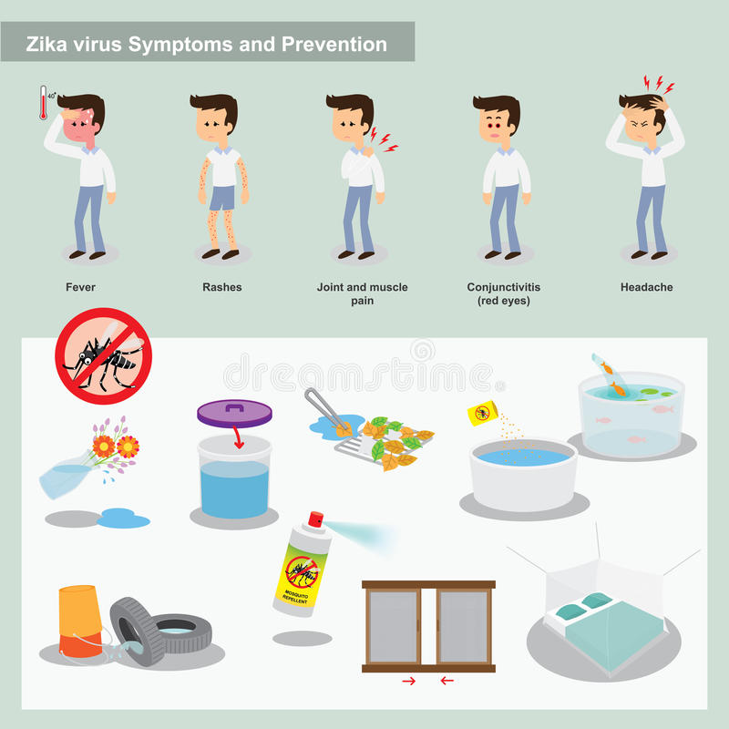Zika virus. Symtoms and preventions vector illustration