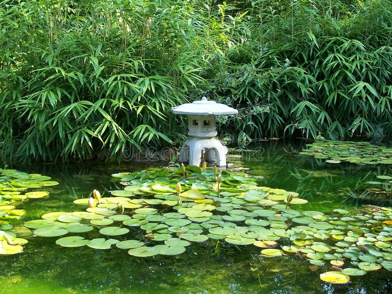 Zilker japanischer Teich durch Alliso stockfotos
