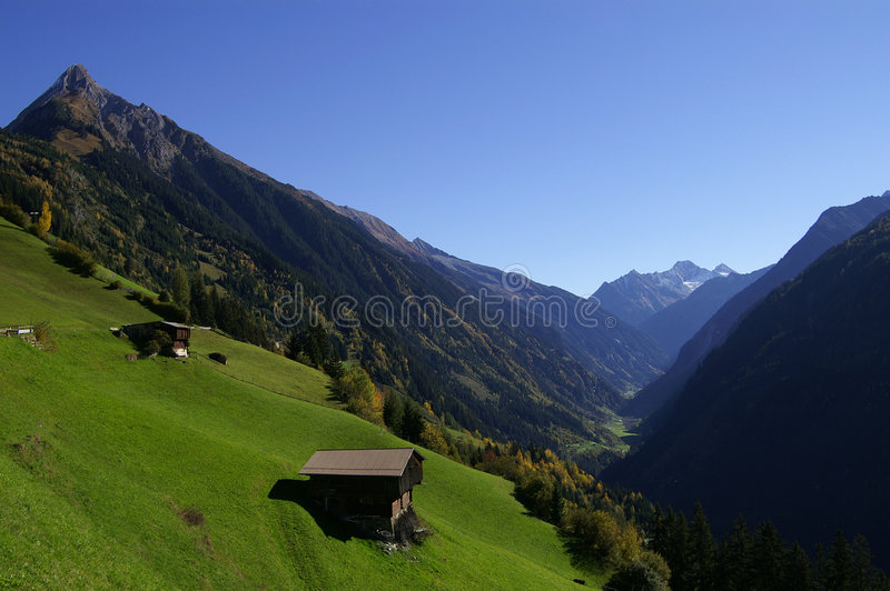 Zillergrund stockfotos