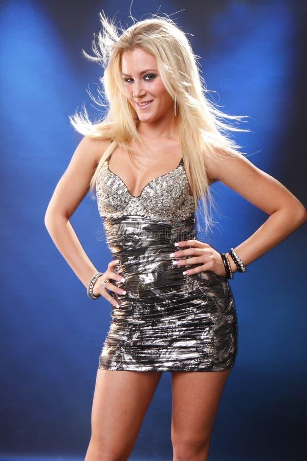 Zilveren blond royalty-vrije stock foto's