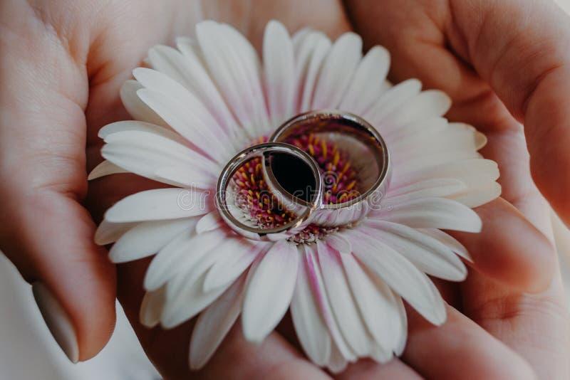Zilveren bruiloftringen tegen bloem op de handen van de vrouw Sluit omhoog geschoten Het symbool van het huwelijk juwelen Liefde  royalty-vrije stock afbeeldingen
