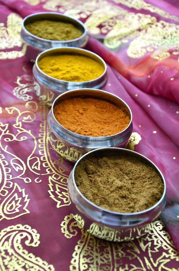 Zilveren Indische Kruidpotten op Roze Gouden Sari royalty-vrije stock foto's
