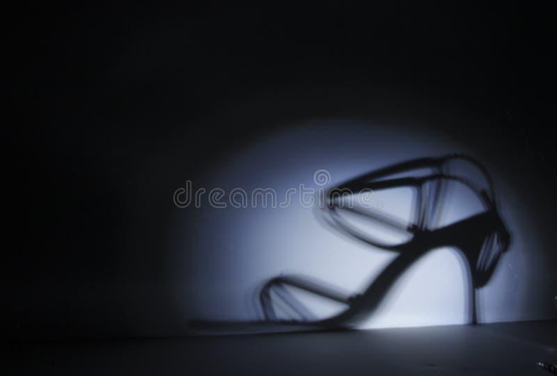 Zilveren Schoen stock fotografie