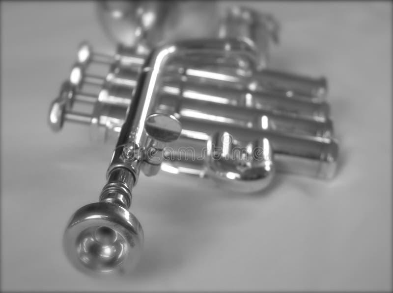 Zilveren Trompet II royalty-vrije stock foto's