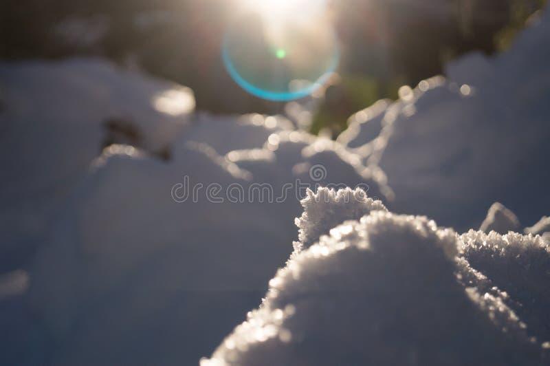 Zim przygody Śnieżna abstrakcja carpathians Ukraina obraz stock
