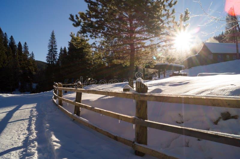 Zim przygody drewniana chata carpathians Ukraina zdjęcia royalty free
