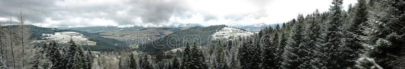 Zim wzgórza i lasu krajobraz - panorama zdjęcie stock