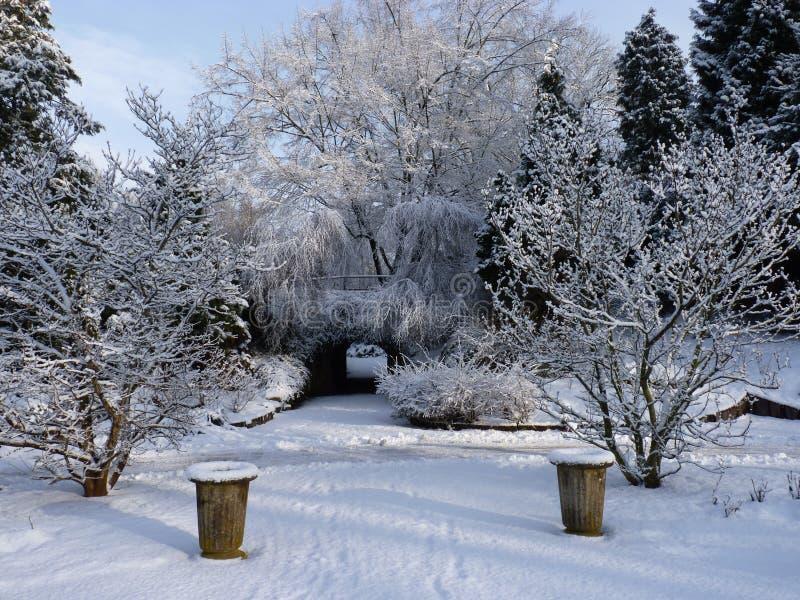 Zima obrazy royalty free