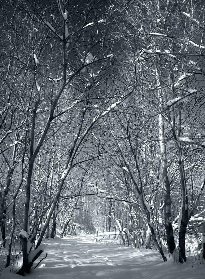 zima bramy obraz stock