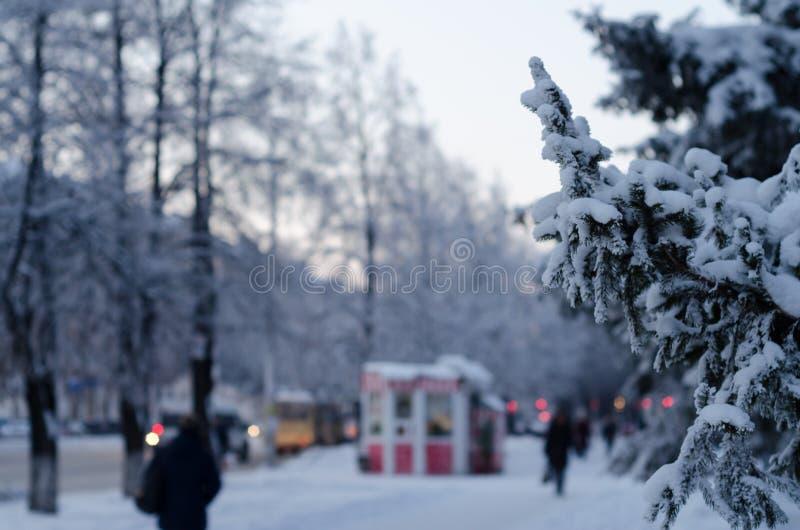Zima dni fotografia stock