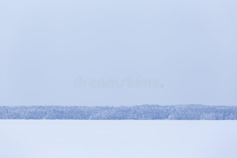 Zima dnia jeziora chmurny krajobraz obraz royalty free